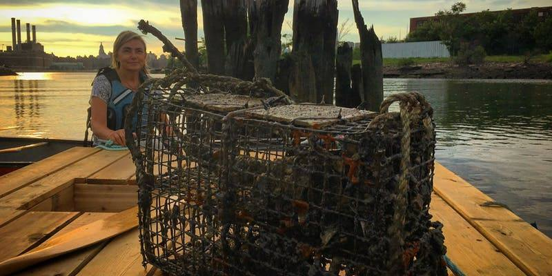 Oyster Monitoring in Bushwick Inlet