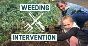 Weeding Intervention