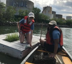 Harbor School students pull oyster cages out of the Inlet
